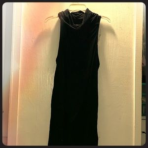 Express turtle neck dress
